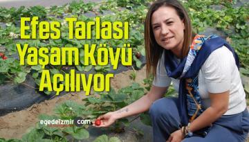 Selçuk'un Gözbebeği Efes Tarlası Yaşam Köyü Açılıyor