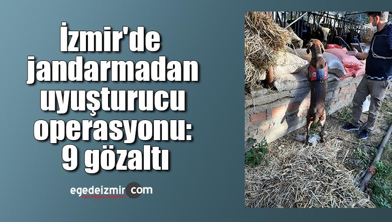 İzmir'de jandarmadan uyuşturucu operasyonu: 9 gözaltı