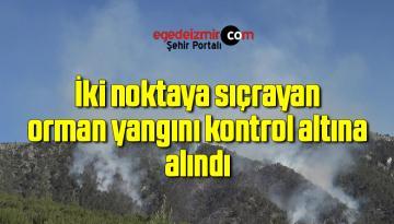 İki noktaya sıçrayan orman yangını kontrol altına alındı