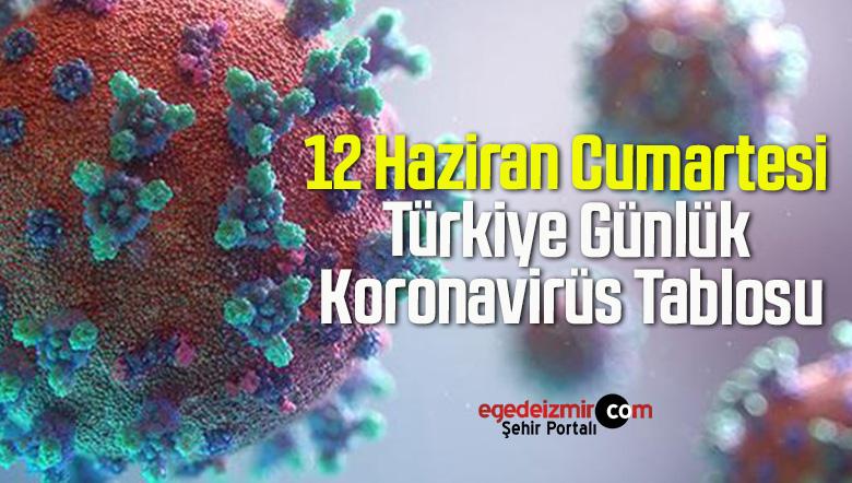 12 Haziran Cumartesi Türkiye Günlük Koronavirüs Tablosu