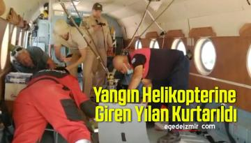 Yangın Helikopterine Giren Yılan Kurtarıldı