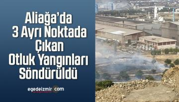 Aliağa'da 3 Ayrı Noktada Çıkan Otluk Yangınları Söndürüldü