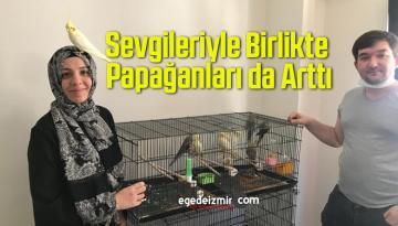 Sevgileriyle Birlikte Papağanları da Arttı
