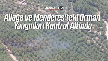 Aliağa ve Menderes'teki Orman Yangınları Kontrol Altında
