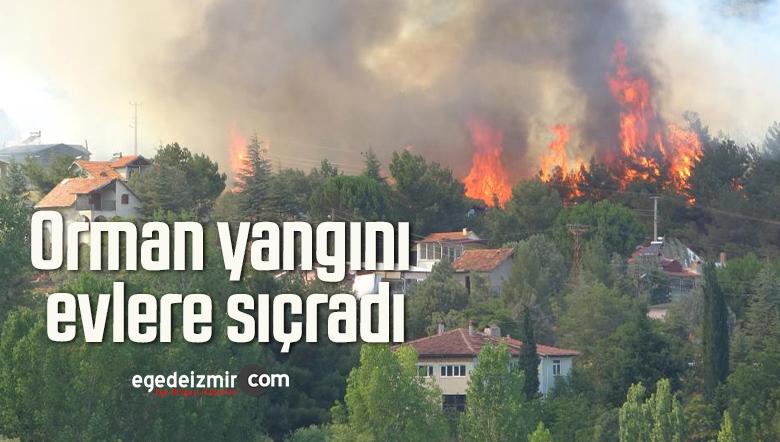 Orman yangını evlere sıçradı