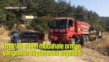 İzmir'de erken müdahale orman yangınının büyümesini engelledi