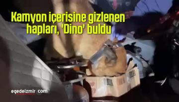 Kamyon içerisine gizlenen hapları, 'Dino' buldu