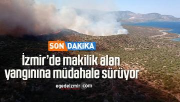 İzmir'de makilik alan yangınına müdahale sürüyor