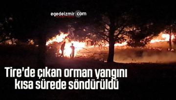 Tire'de çıkan orman yangını kısa sürede söndürüldü