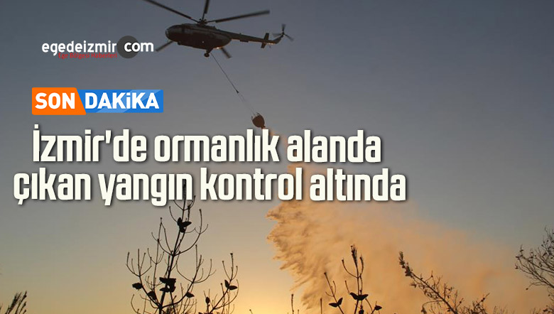 İzmir'de ormanlık alanda çıkan yangın kontrol altında