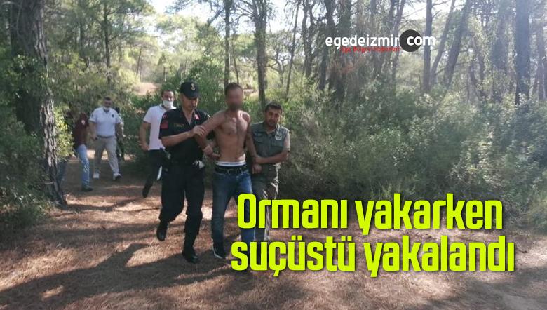 Ormanı yakarken suçüstü yakalandı
