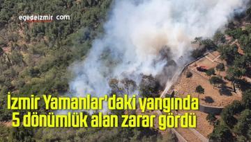 İzmir Yamanlar'daki yangında 5 dönümlük alan zarar gördü