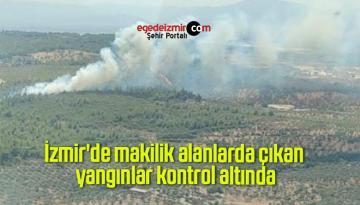 İzmir'de makilik alanlarda çıkan yangınlar kontrol altında